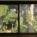 居室の窓風景